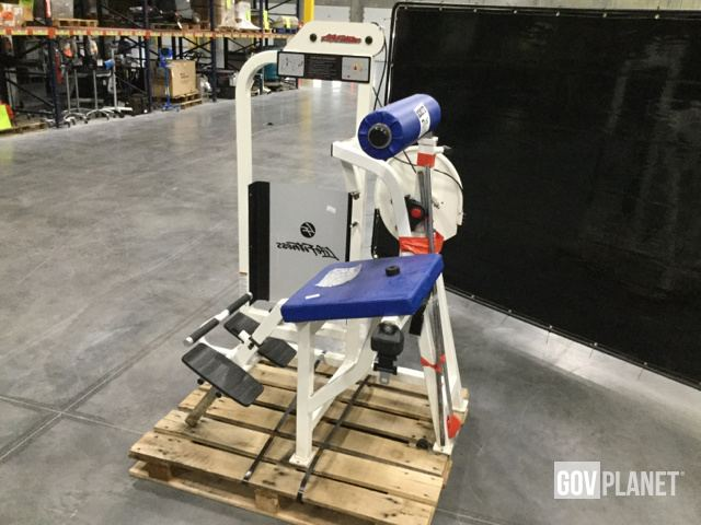 Surplus Life Fitness Pro1 Back Extension in Chambersburg