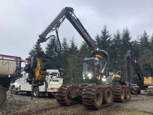 Timber Harvesters